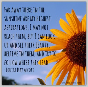 AspirationsLouisaMayAlcott 300x296 - Top 10 Success Quotes