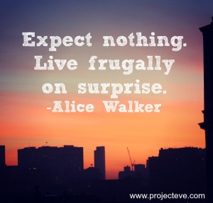 live on surprise alice walkerFB 300x287 - Top 10 Success Quotes