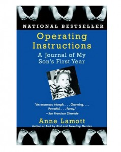 operating-instructions-book-anne-lamott
