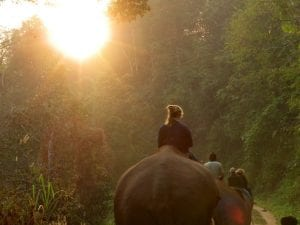 Riding elephants bareback into the sunset in Thailand