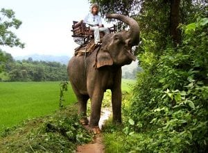 riding-elephant-thailand-big
