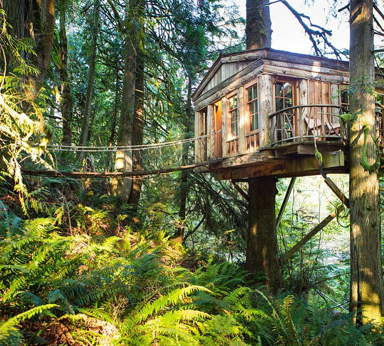 Spend Night Tree House - 8 Steps to Achieving your Bucket List