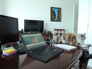 Working From Home with Your Spouse:  What Doesn't Kill You…