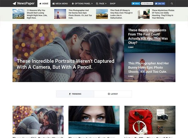 newspaper - 10 Great Themes for Your New Website